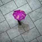 Alemanes saludan a la primavera con lluvias