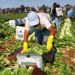 México firma acuerdo para reducir accidentes laborales a inmigrantes