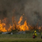 Policía arresta a sospechosa de desatar incendios en California